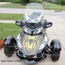 vinyl-wrap-332-spider-on-web-yellow-3