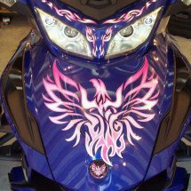 Phoenix Tribal Pink Frunk Spyder