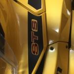 STS Emblem